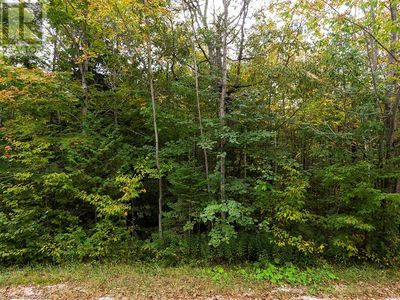 Wiarton Listing for Sale - South Bruce Peninsula
