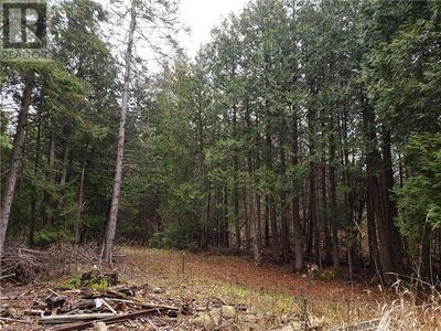 Lions Head Listing for Sale - Northern Bruce Peninsula